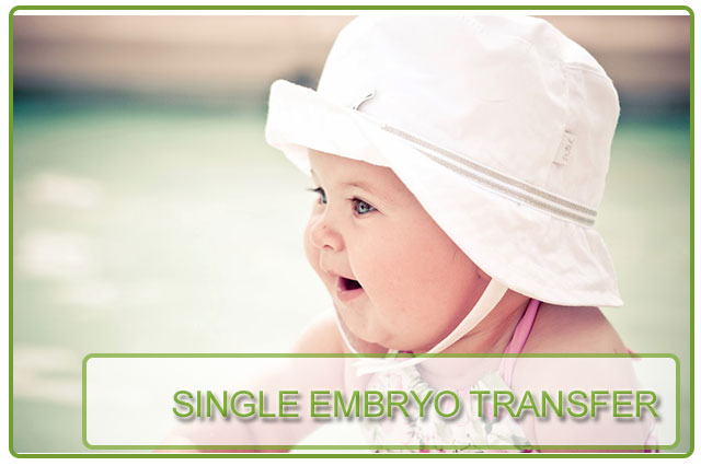 transfer single parents Northwood university's free-enterprise transfer scholarships are transfer students who have exceptional academic merit scholarships for single parents.